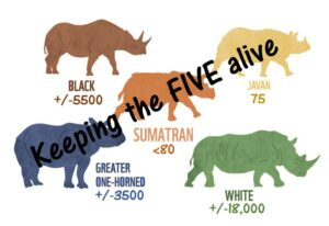 22 September 2021 – Today is World Rhino Day